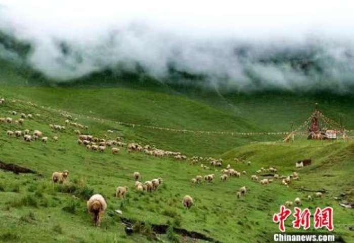 最高检派员督导甘肃祁连山系列环境污染案