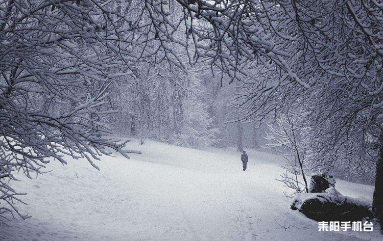冬天的回味,雪花飘飘雪花舞